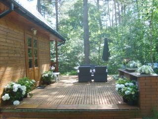 maison de campagne dans une foret - Wilga vacation rentals