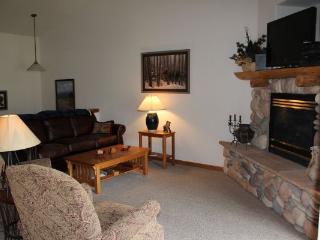 127 Lookout Ridge - Dillon - Dillon vacation rentals