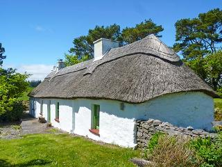 MICK MOORE'S COTTAGE , family friendly, character holiday cottage, with a garden in Lismore, County Waterford, Ref 4611 - Lismore vacation rentals