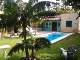 VILLA WITH PRIVATE GARDEN AND POOL - Callao Salvaje vacation rentals
