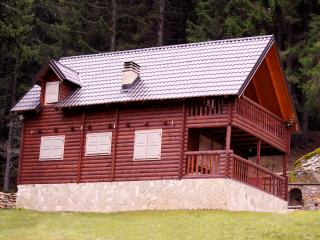 Nice Cabin with Deck and Satellite Or Cable TV - Plav vacation rentals