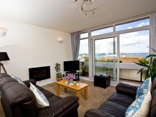 Lyme View Too! located in Brixham, Devon - Brixham vacation rentals