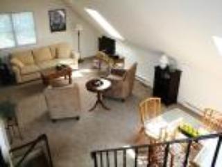 ASP-1237 - Orleans vacation rentals