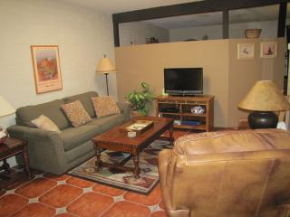 Nice Condo with Internet Access and A/C - Green Valley vacation rentals