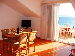 Apartment Sea Jewel 8 for 5 - 30m from the sea - Pakostane vacation rentals