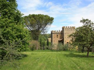 Wonderful Villa with Internet Access and Cleaning Service - San Donato in Poggio vacation rentals