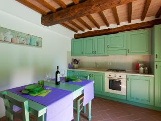 Casa Vacanze Benestare_ULIVO - Gambassi Terme vacation rentals