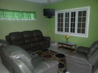 1 Bedroom Apartment Danishie's Place - Spanish Town vacation rentals