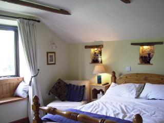 Perfect Cottage with Internet Access and Alarm Clock - Dulverton vacation rentals