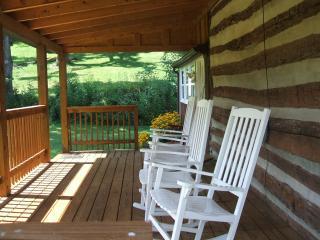 Cozy 3 bedroom Rileyville Cabin with Deck - Rileyville vacation rentals