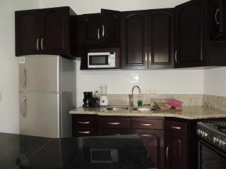 2 bedroom / 2 bathroom apartment - Playa del Carmen vacation rentals