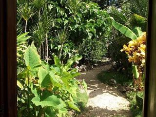Charming House with Garden and A/C, Tulum-Mexico - Tulum vacation rentals