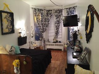 Trendy little studio downtown/Le Plateau Festivals - Montreal vacation rentals