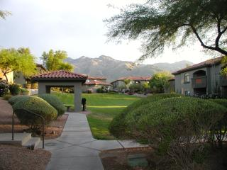 Mountain Views, steps to the pool - Tucson vacation rentals
