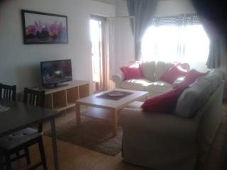 Nice Condo with Television and Microwave - Caceres vacation rentals