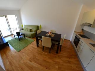 Blue Horizon One bedroom apartments - Przno vacation rentals