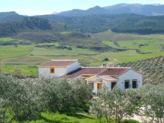 Andalucia Country House with Pool - El Burgo vacation rentals