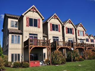 Stylish & Appealing 4 Bedroom townhome with lake & ski slope views! - McHenry vacation rentals