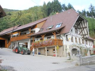 Vacation Apartment in Lautenbach - 700 sqft, 1 living / bedroom, max. 4 people (# 8416) - Lautenbach vacation rentals