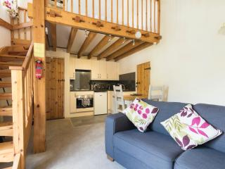 1 bedroom Cottage with Internet Access in Holsworthy - Holsworthy vacation rentals
