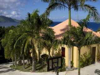 Above and Beyond Villa - Saint Croix vacation rentals
