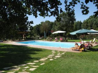 Bright 1 bedroom Condo in Giove - Giove vacation rentals