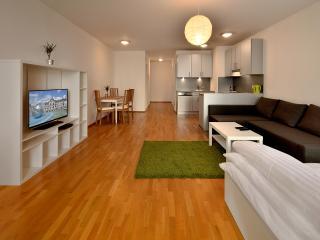 Deluxe King Studio 29 Augusta Street 36C - Bratislava vacation rentals