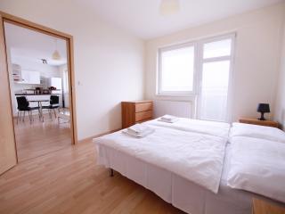 1 BDR apartment Zahradnicka 36 - Bratislava vacation rentals