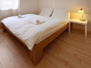 1 BDR apartment Dunajska Street 22 - Bratislava vacation rentals