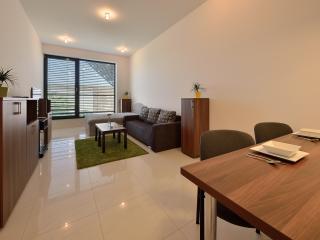 1 BDR apartment Namestie slobody No. 13 - Bratislava vacation rentals