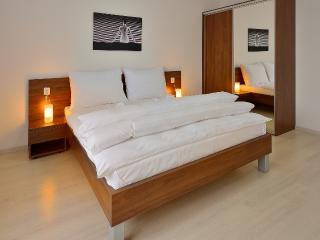 2 BDR apartment Namestie SNP 21 - Bratislava vacation rentals