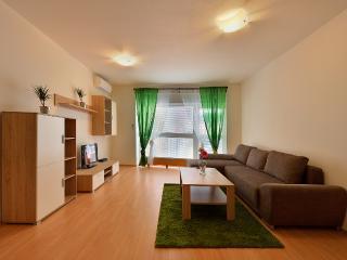 1 BDR apartment Mickiewiczova 14 - Bratislava vacation rentals
