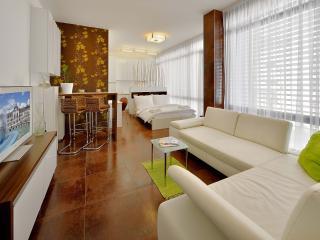 Studio Cintorinska Street No. 13 - Bratislava vacation rentals