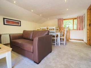 Nice 3 bedroom Lodge in Holsworthy - Holsworthy vacation rentals
