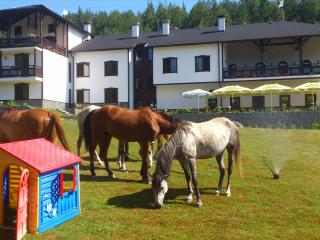 Perfect Resort with Internet Access and Central Heating - Bansko vacation rentals