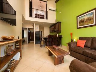 Have a slice of heaven on earth! Brand new fully furnished and equipped condo - Playa Grande vacation rentals