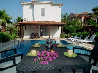 Villa Nehir PRICE REDUCED for early and late season - Dalyan vacation rentals