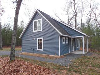 BEAUTIFUL NEW COTTAGE CLOSE TO BIG STAR LAKE! - Baldwin vacation rentals