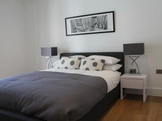 Adorable 1 bedroom Condo in London - London vacation rentals