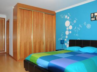 Nice Villa with Internet Access and Satellite Or Cable TV - Montemor-o-Velho vacation rentals