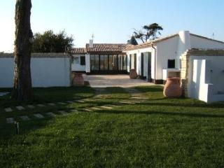 VILLA CONTEMPORAINE AVEC GRAND - Ars-en-Re vacation rentals