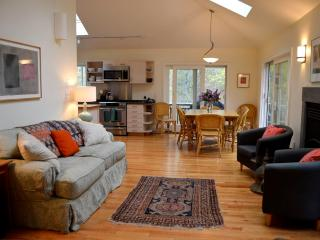 New Luxury Contemporary ~ Available May & Fall - Vineyard Haven vacation rentals