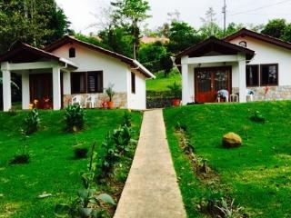 New Listing!  Pura Vida - Gorgeous Lake Arenal - Nuevo Arenal vacation rentals