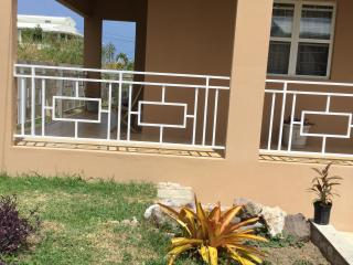 Nice Apartment with Internet Access and Garden - Basseterre vacation rentals