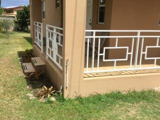 Nice Apartment with Internet Access and Kettle - Basseterre vacation rentals