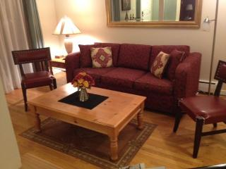 Fully Furnished / All inclusive Downtown Condo - Boulder vacation rentals