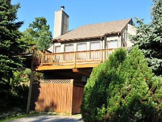 Stylish Townhome with Hot Tub conveniently located to area attractions! - Oakland vacation rentals