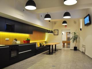 Bomb Shelter apartment  in the center of Vilnius (free parking, spa) - Vilnius vacation rentals