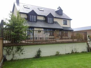 pleasant view - Newcastle Emlyn vacation rentals