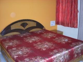 2 bedroom Apartment with Internet Access in Vadodara - Vadodara vacation rentals